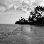 「イロハワイ〜ハワイの色を巡る旅〜」オワフ島紹介スポット 2019年2月4日放送