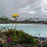 【アイスランド】地球タクシー「レイキャビクを走る」 BGM